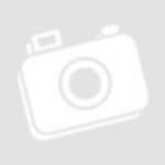 Vészvilágító LED 2,7W/3VA; készenlét(40lm)/állandó(100lm); 1,5h; 3,6V/600mAh; Ni-Cd; oldalfali